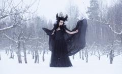 Winter Wizard